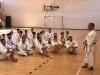 dks-Miura-Ispicanov2018-A3